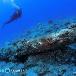 Rempart canon dive site in Mauritius