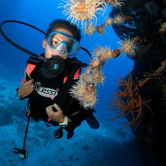 Diver in Mauritius